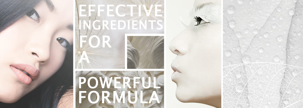 Effective Ingredients for a Powerful Formula